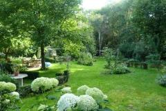 Tuin met veel schaduw en veel zon